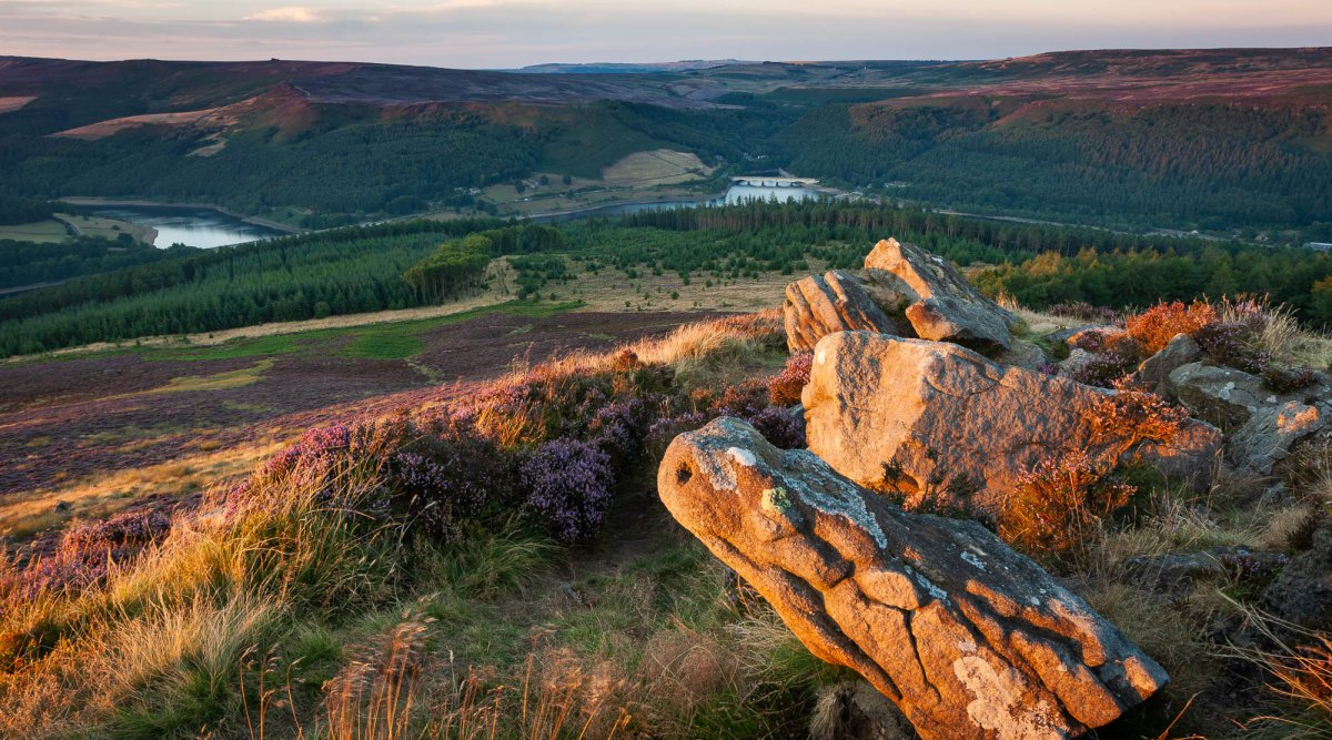 The peak district in purple